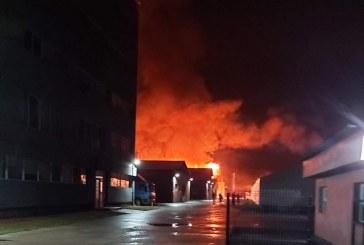 Incendiu la o firma de prelucrare a lemnului din Targu Lapus (FOTO)