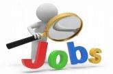 Ce locuri de muncă mai sunt disponibile în Maramureș pe timp de pandemie