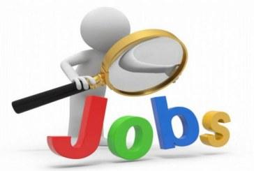 Aproape 500 locuri de munca disponibile in judet, prin AJOFM