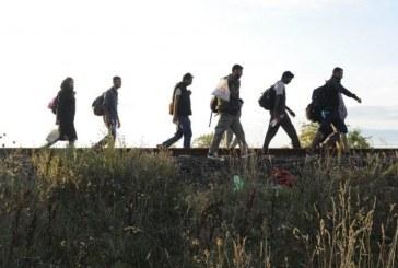 Zeci de migranti au fost descoperiti intr-un tunel clandestin sub frontiera dintre Ungaria si Serbia