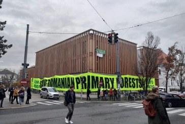Holzindustrie Schweighofer, luata in vizor la Viena: Activistii au cerut firmei sa ocoleasca padurile seculare din Romania