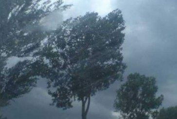 Meteo: Vant de pana la 100km/ora pe crestele montane din Maramures