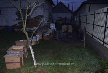 Perchezitii in Sighetu Marmatiei. Peste 35.000 de pachete cu tigari au fost descoperite intr-un beci