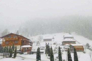 Meteo: -8 grade C in Pasul Prislop. Ninsori slabe anuntate in zona montana