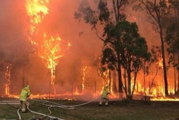 Incendii in Australia – 24 de morti si peste cinci milioane de hectare de teren distruse de flacari