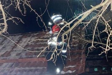 Baia Mare: Casa cuprinsa de flacari in miez de noapte