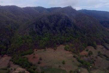 """Incendiul din zona """"Pietrele Șoimului"""" a fost lichidat cu ajutorul elicopterului"""