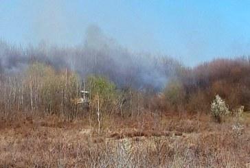 În ultimele 24 de ore: Șapte incendii de vegetație uscată în tot atâtea localități din județ