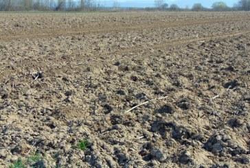 Vânzare teren arabil și casă în Moisei – Extras publicație imobiliară, din data de 28. 05. 2020