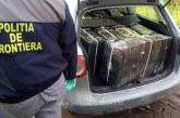 Polițiștii de frontieră au confiscat peste 20.000 de pachete cu țigări la Sarasău și Crasna Vișeului