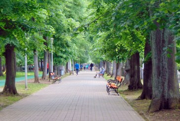 Băimărenii se bucură de libertate. Parcul Municipal, printre locurile preferate în această perioadă