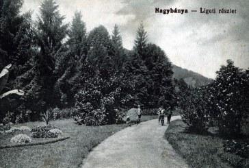 Din istoria orașului: Obiective turistice băimărene de altădată (FOTO)