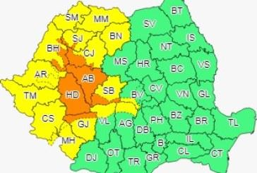 Cod galben pentru Crișana, Maramureș, Banat, în nord-vestul Olteniei și local în Transilvania