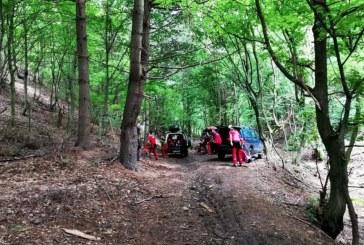 Bătrân rătăcit într-o pădure din zona Ilba, găsit de salvamontiști