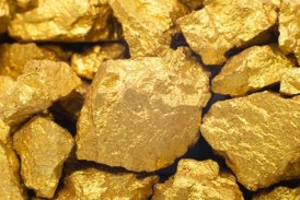 40 grame de aur și 645 de lei ridicate de polițiștii maramureșeni