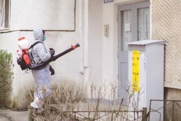 Câți bani a dat Primăria Baia Mare pentru dezinfecția clădirilor instituției, școlilor, scărilor de bloc, centrelor și locuințelor sociale