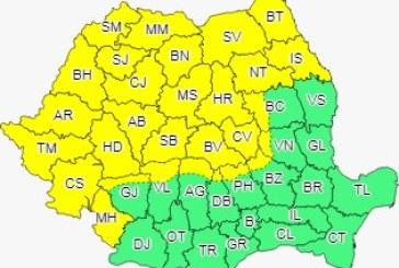 Cod galben în Banat, Crișana, Transilvania, Maramureș, jumătatea de nord a Moldovei și vestul Olteniei