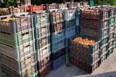 120 de kilograme de fructe fără documente de proveniență, confiscate în Maramureș