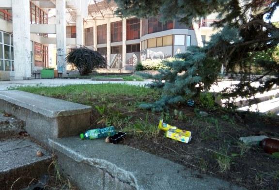Lângă Casa Tineretului din Baia Mare: Mizerii și un peisaj dezolant (FOTO)