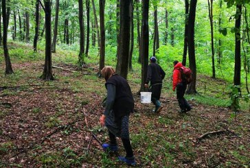 Maramureș: Trei persoane rătăcite au fost găsite cu ajutorul tehnologiei AML