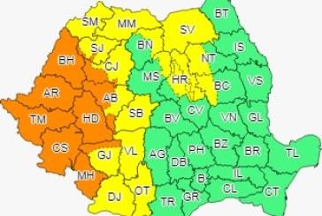 Cod galben de ploi în Maramureș, local în Oltenia, Transilvania și vestul Moldovei
