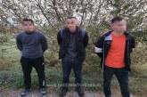 Doi cetățeni din Siria și unul din Libia, opriți la frontiera de nord a țării