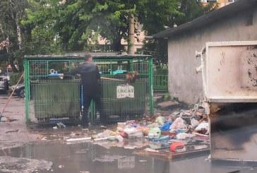 BAIA MARE – Controale zi de zi la platformele de depozitare a gunoaielor din oraș