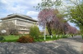 ANOSR: Propunerea Guvernului de creştere a limitei de pensionare, o frână suplimentară în modernizarea universităţilor