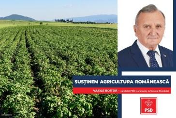"""Vasile Boitor: """"Pentru agricultura românească PSD propune trei piloni și cinci direcții strategice"""""""