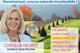 Proiect – Maramureșul, resurse naturale inestimabile