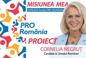 Cornelia Negruț – Podul Tisa, obiectiv strategic pentru Maramureș