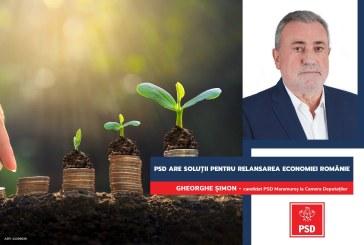 """Gheorghe Șimon: """"PSD propune un pachet de măsuri de relansare economică a României"""""""