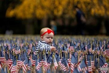 Imaginea zilei: un copil se joacă în mijlocul unor steguleţe americane amplasate cu ocazia marcării Zilei Veteranilor