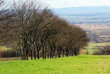 Află prognoza meteo în Maramureș până în 6 decembrie