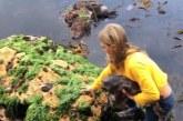 O fetiţă din Australia a salvat un rechin eşuat în urma refluxului