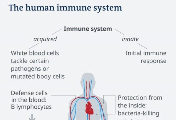 Cele 7 categorii de simptome ale infectării cu coronavirus