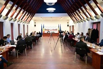MIRCEA CIRȚ SCHIMBAT – Consilierii locali aleg mâine viitorul președinte de ședință