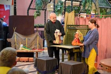 Ce spectacole poți să vezi la Teatrul Municipal Baia Mare între 30 și 31 ianuarie