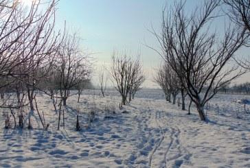 MARAMUREȘUL EXTREMELOR – Strat de zăpadă proaspăt în unele localități din Maramureș