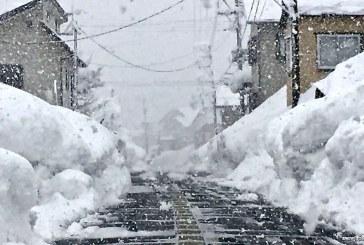Japonia – Mai mulţi morţi în urma ninsorilor abundente
