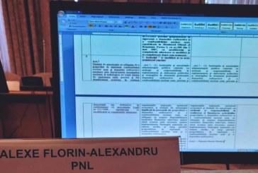 Florin-Alexandru Alexe: Consolidăm economia și relansăm industriile afectate de criza sanitară