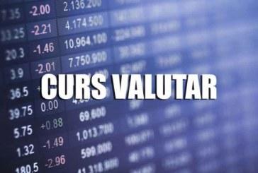 Euro s-a stabilizat de cinci ședințe la 4,9230 lei