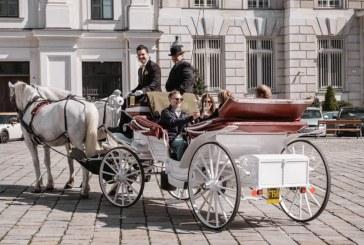 Birjarii din Viena fac apel la donaţii de alimente pentru caii lor