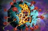 3.474 cazuri noi de persoane infectate cu coronavirus
