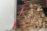 În Maramureș: Prima infracțiune de transport de materiale lemnoase în volum de peste 10 mc fără documente legale de proveniență