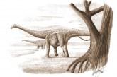 Situl pierdut al dinozaurilor din Transilvania a fost regăsit după 100 de ani