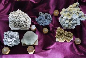 """Muzeul Județean de Mineralogie """"Victor Gorduza"""" Baia Mare  a primit o donație de eșantioane minerale și carte"""