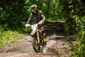 În Boiu Mare: Un tânăr a acroșat cu motocross-ul un căprior