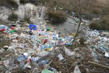 """POLUARE -""""Moda"""" aruncării gunoaielor prin păduri sau în apă a revenit în Maramureș"""