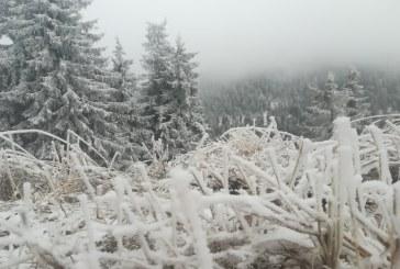 CE SĂ MAI CREDEM – Temperaturi sub 0 grade Celsius în Maramureș pe final de aprilie